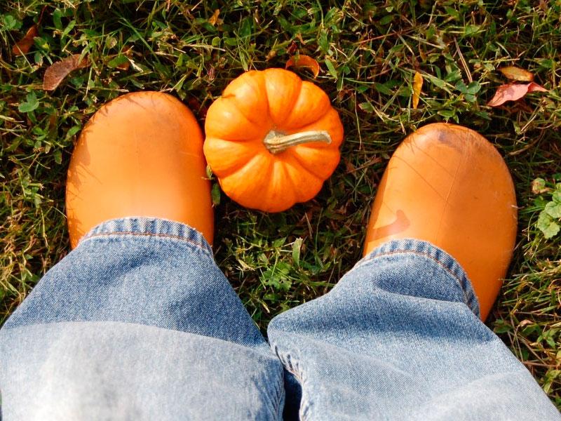 Pantalones que se llevarán este otoño